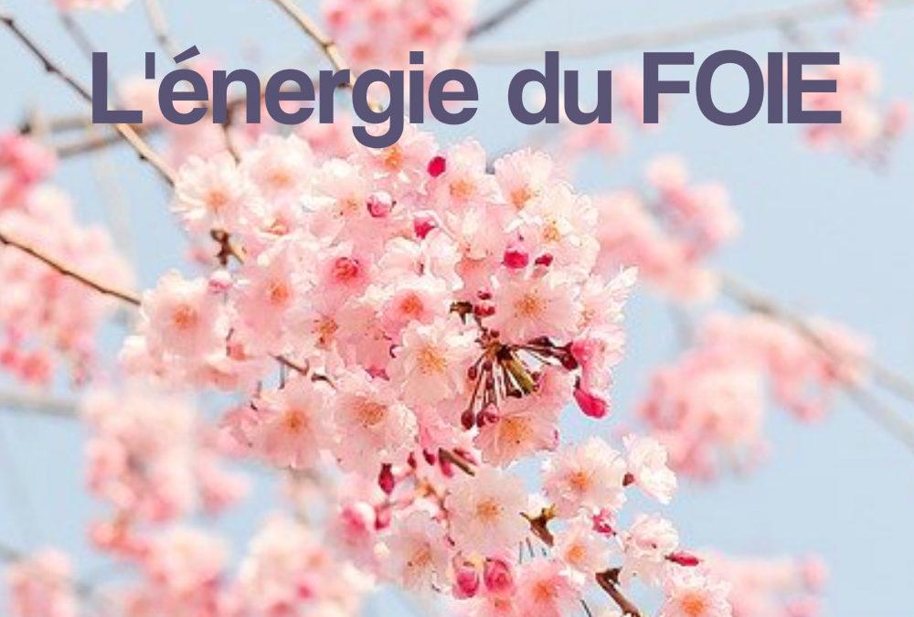 L'énergie du Foie et le printemps