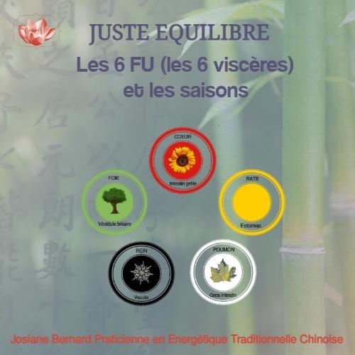 Les 6 FU (viscères) et les saisons en Médecine Traditionnelle Chinoise